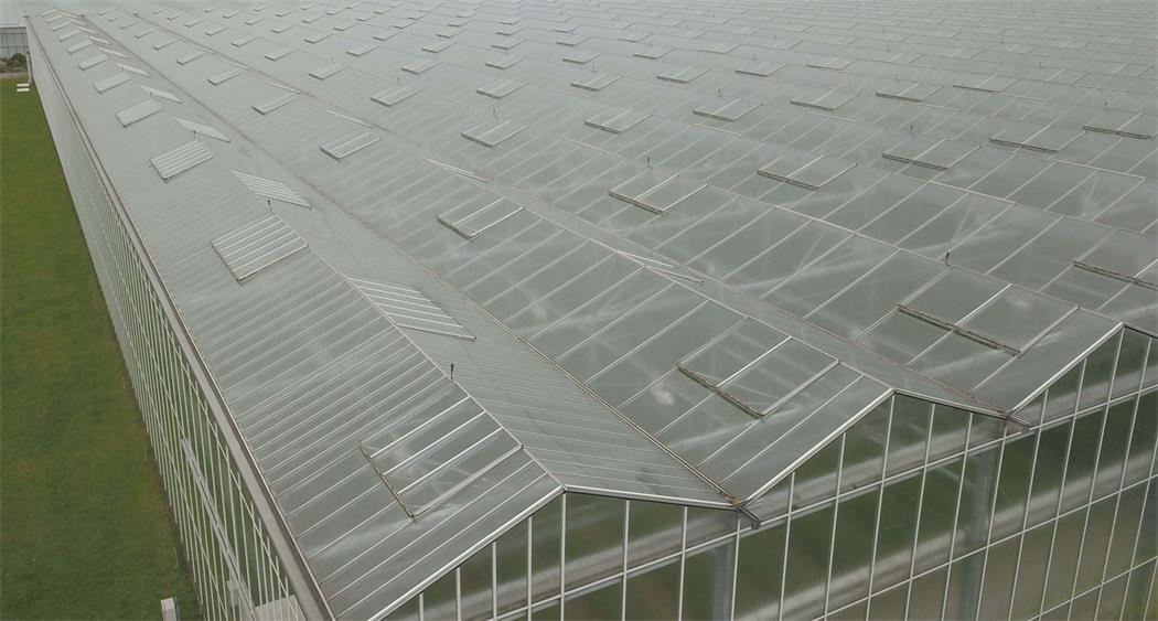 diffused-glass-greenhouse